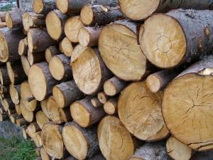 hartholz-kamin